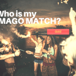 imago therapy, imago match
