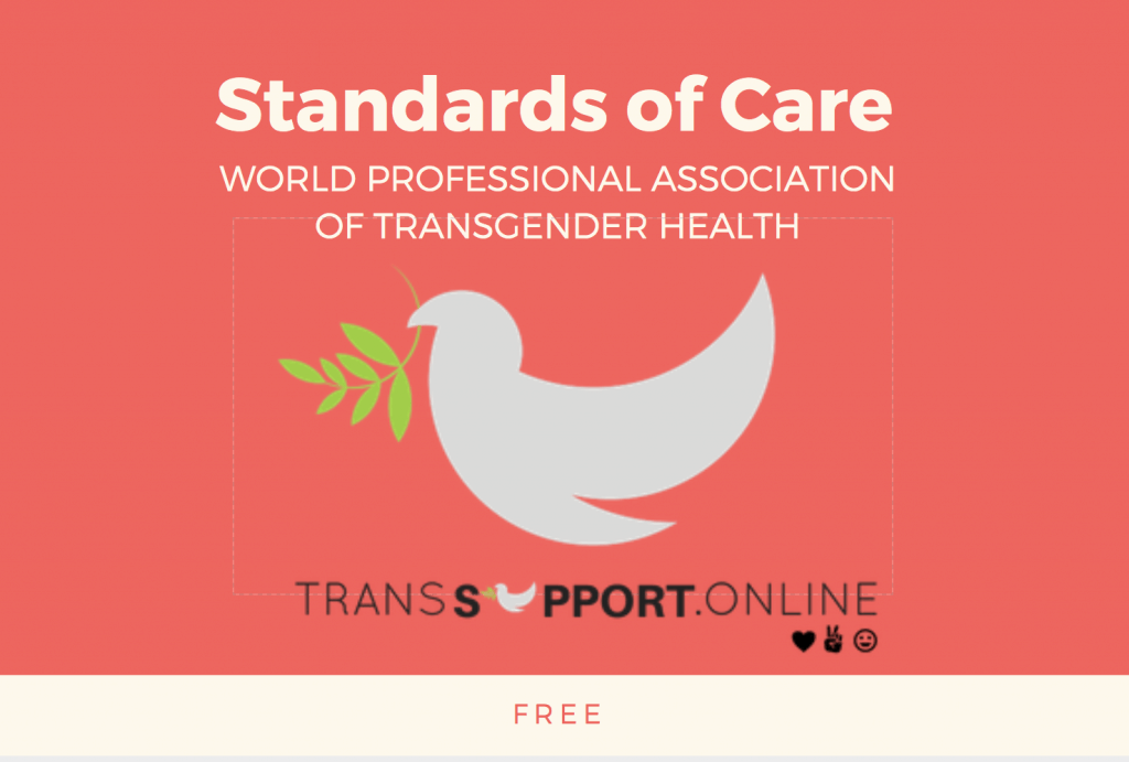 standards of care, transgender