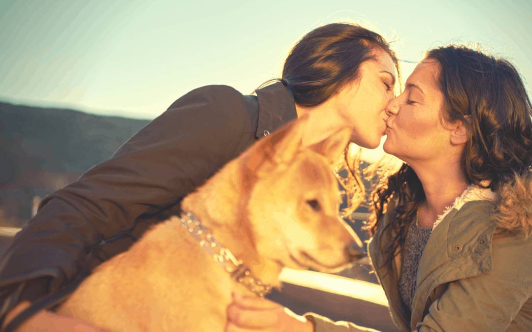 Lesbians Dogs and Divorces